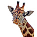 Large Giraffe Head Graphic